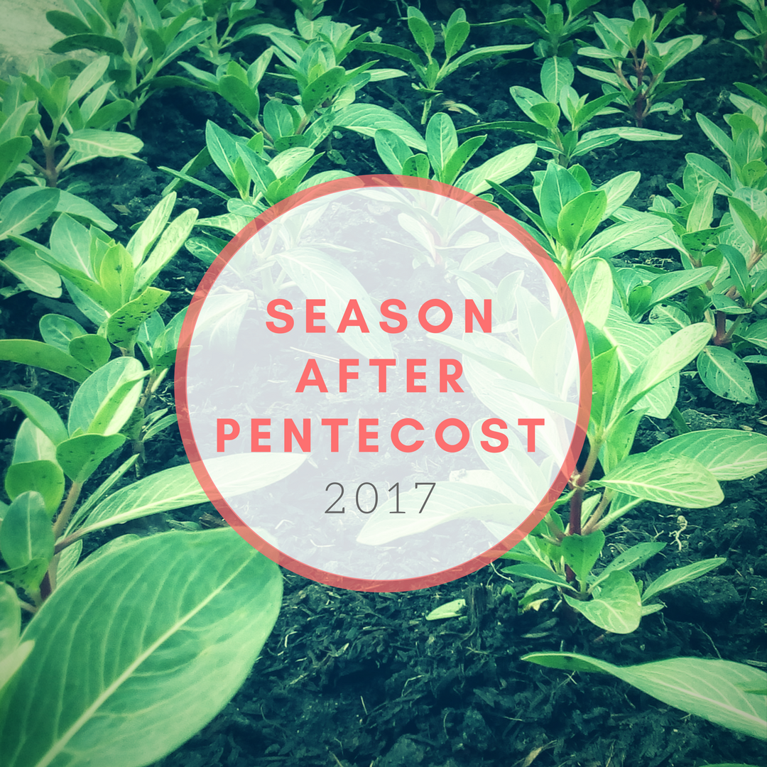 Season After Pentecost 2017